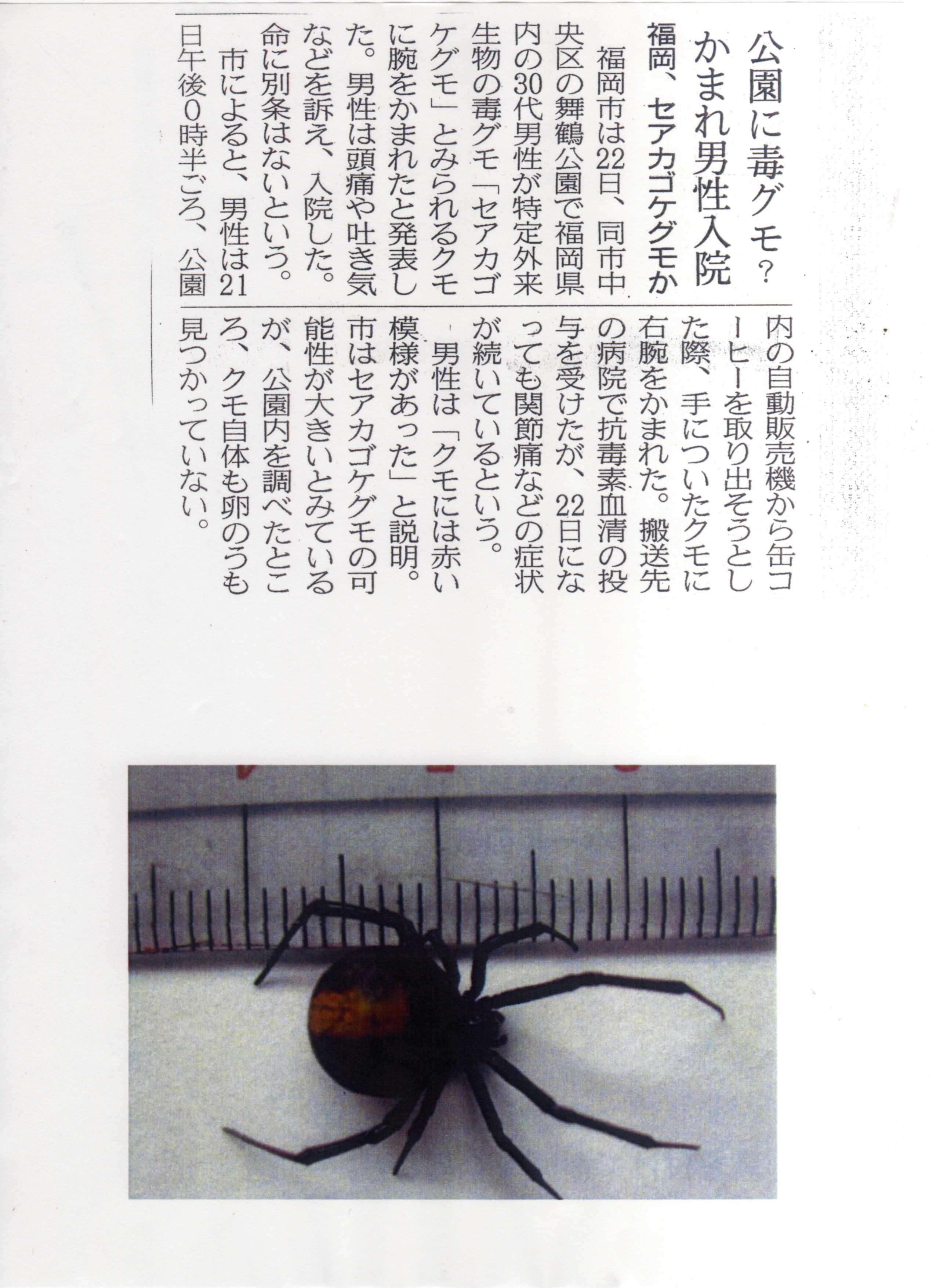 舞鶴公園での注意事項!
